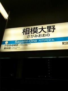 DSC_0262_0001.JPG