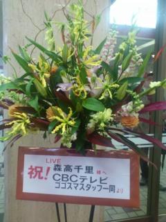 DSC_1337_0001.JPG